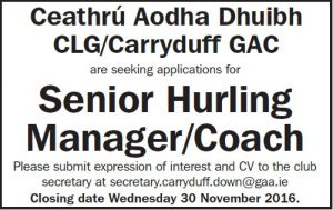 Senior Hurling Manager