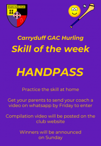 Hurling U8 skill of the week no5 Handpass