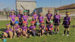 Carryduff P5/6 team at Clonduff Blitz 21st April 2018
