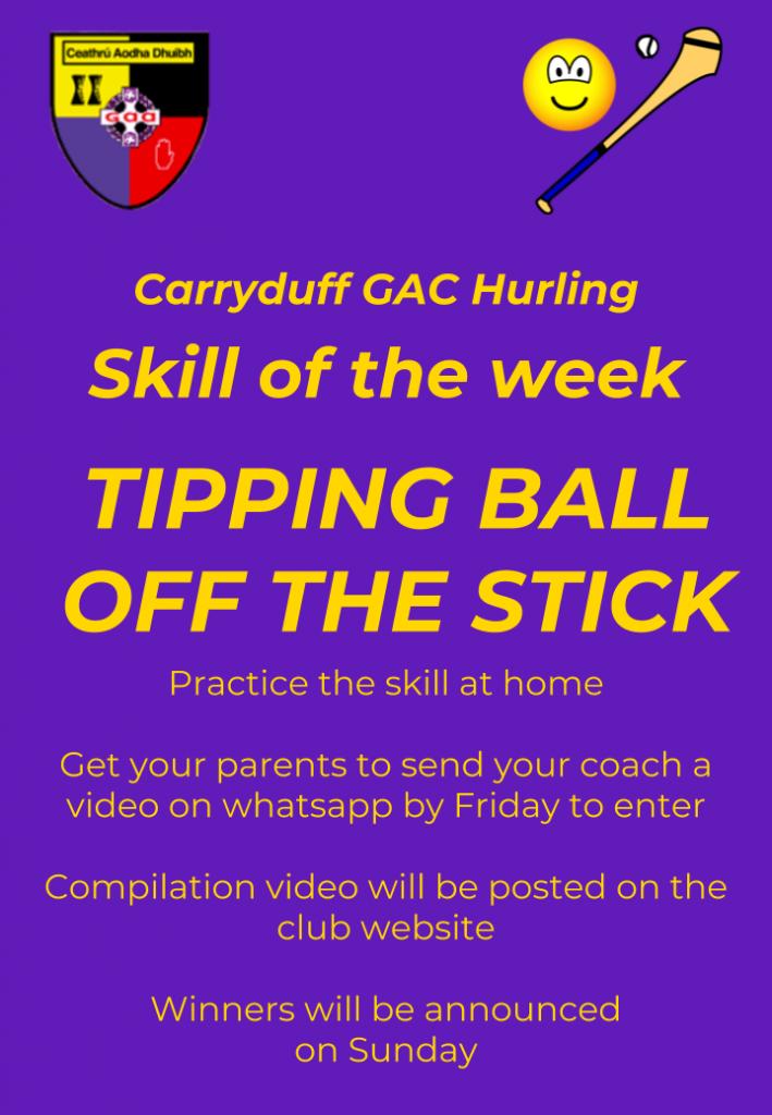 Carryduff GAC hurling Skill of the week 4