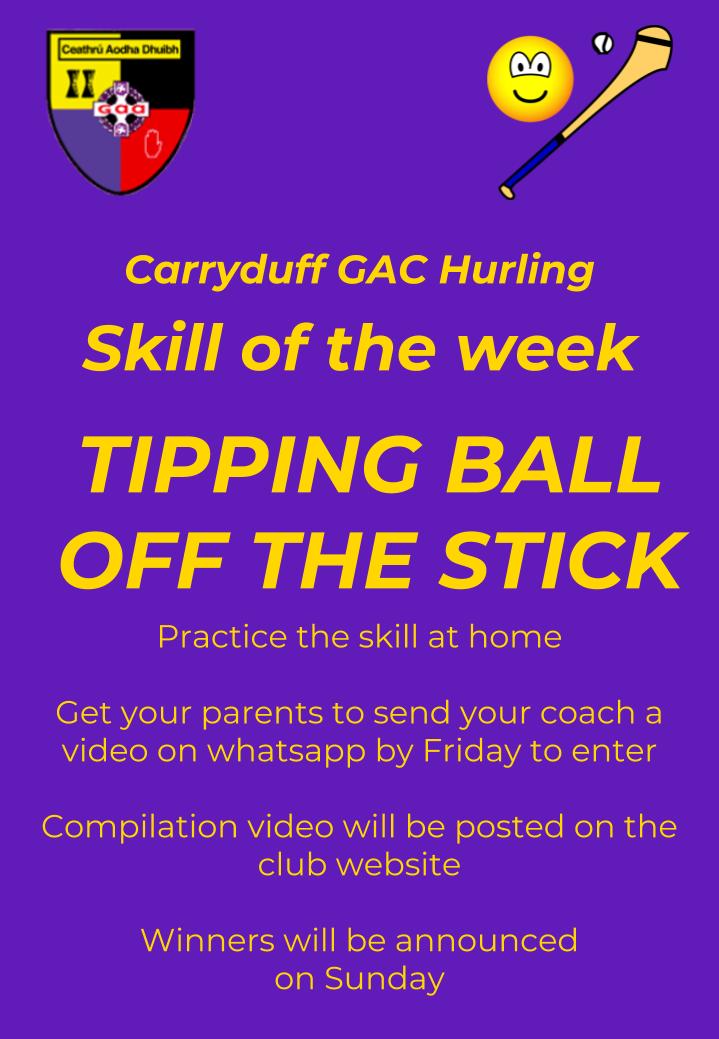 Hurling Skill of the week (3)