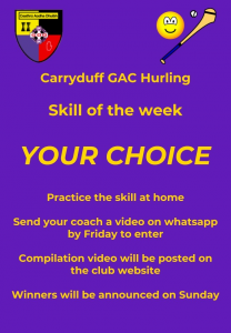 Carryduff GAC Hurling skill of the week