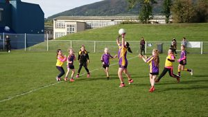 U8 girls attended their final Go Games blitz  at St Johns GAC