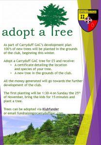 Adopt a tree !