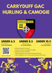 Hurling and Camogie for underage.