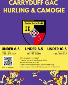 Underage hurling extravaganza