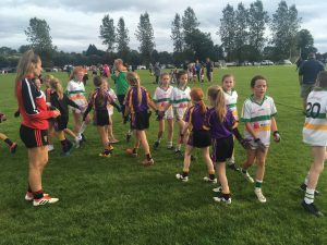 Carryduff U10 Girls – Down Development Blitz – Teconnaught GAC – Saturday 28th September