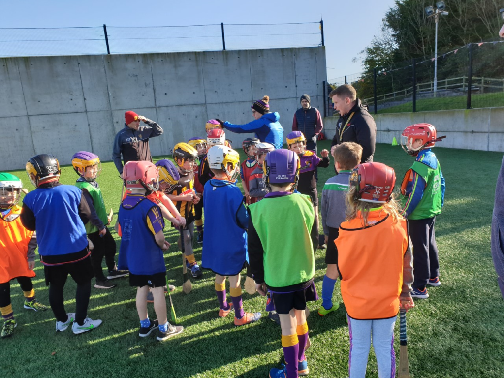 Successful first coach-the-coaches hurling sessions with Danny Toner