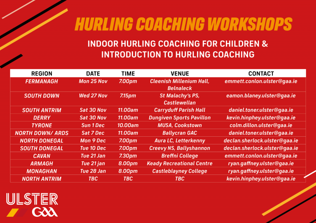 Hurling workshop in Carryduff Parish Hall this Saturday