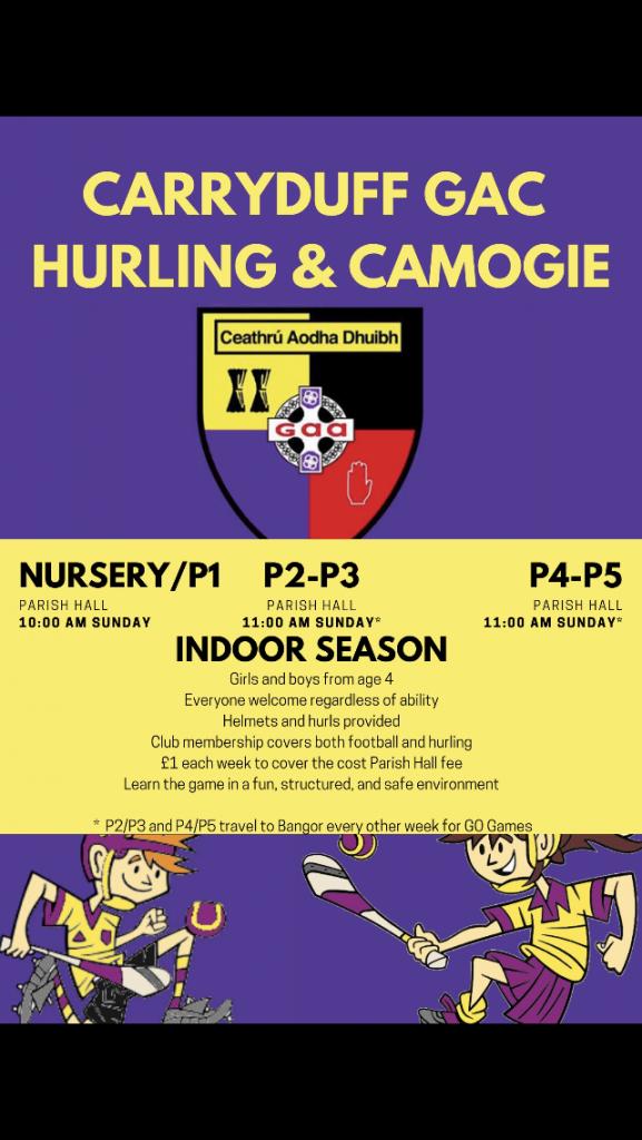 Winter Indoor Hurling and Camogie